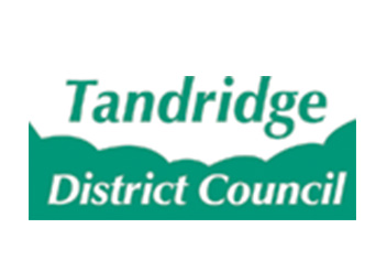 Tandridge District Logo